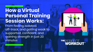 How Virtual Training works
