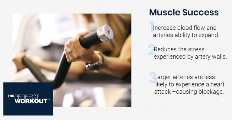Muscle Failure infographic