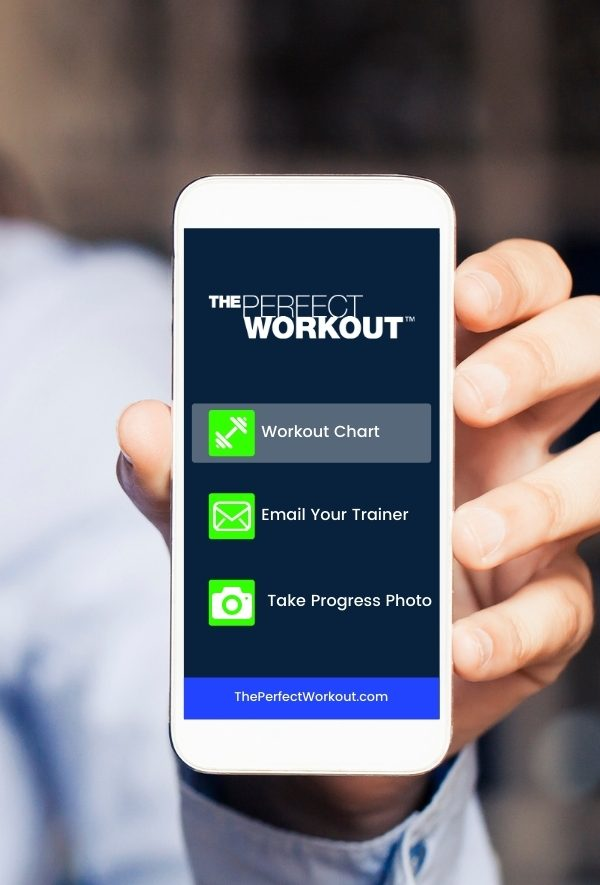 the perfect workout safety standards fitness innovation app