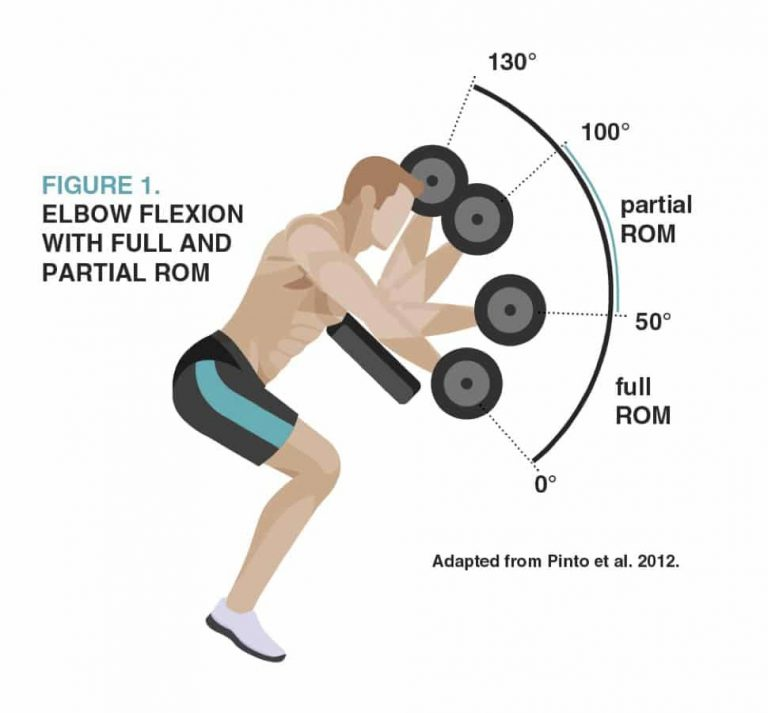 Full and Partial Range of Motion