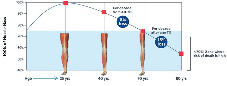 Muscle Loss Over Time Infographic