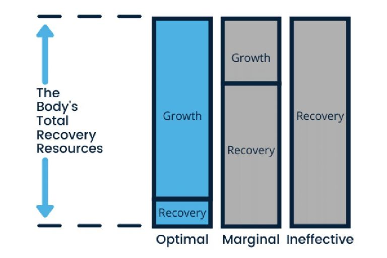 Graph of the body's total recovery resources