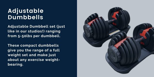 the perfect workout safety standards fitness innovation adjustable dumbbells for at home virtual training